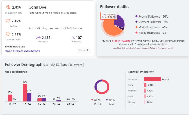 Analisa.io follower authenticity and demographics
