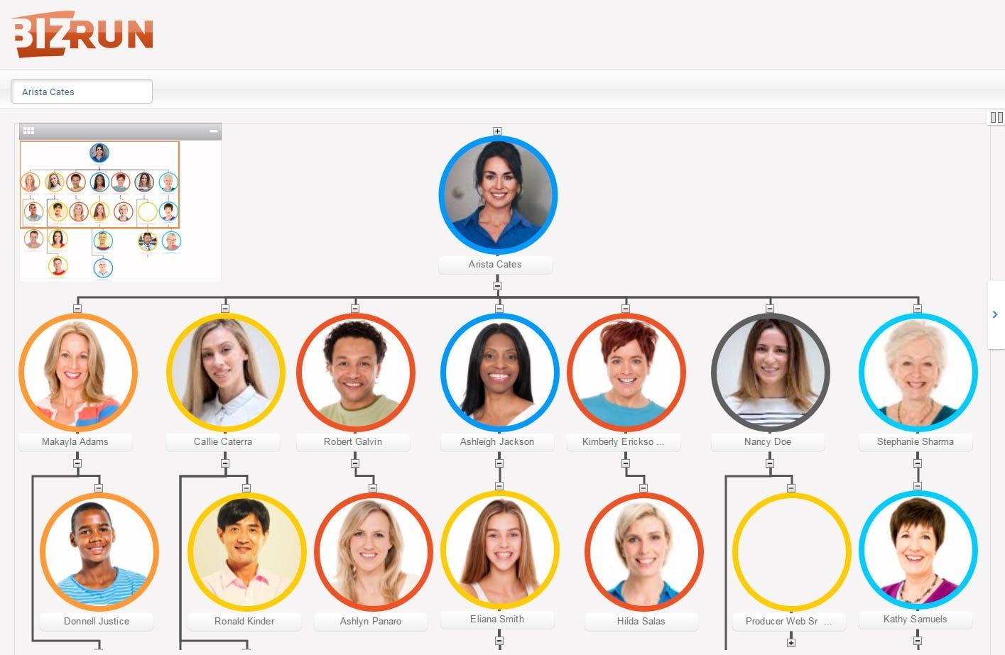 BizRun Software - Org chart interface