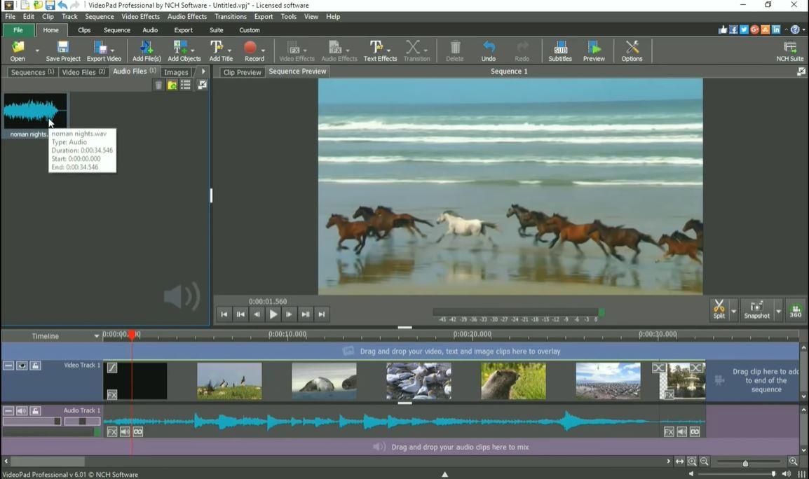 VideoPad audio management