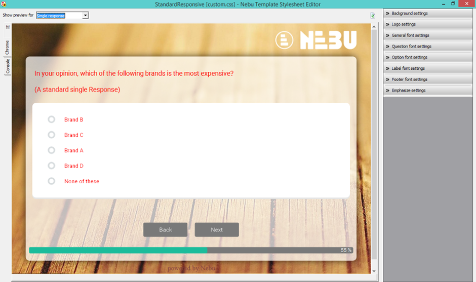 Dub InterViewer screenshot: The Nebu template stylesheet editor enables users to edit the stylesheet of responsive templates