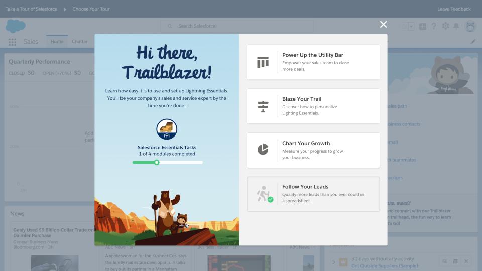 Salesforce Essentials Software - Setup