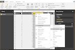 Microsoft Power BI Screenshot: Microsoft Power BI Query Editor
