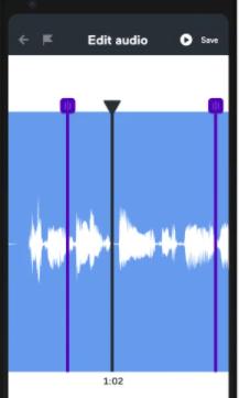 Anchor audio editing