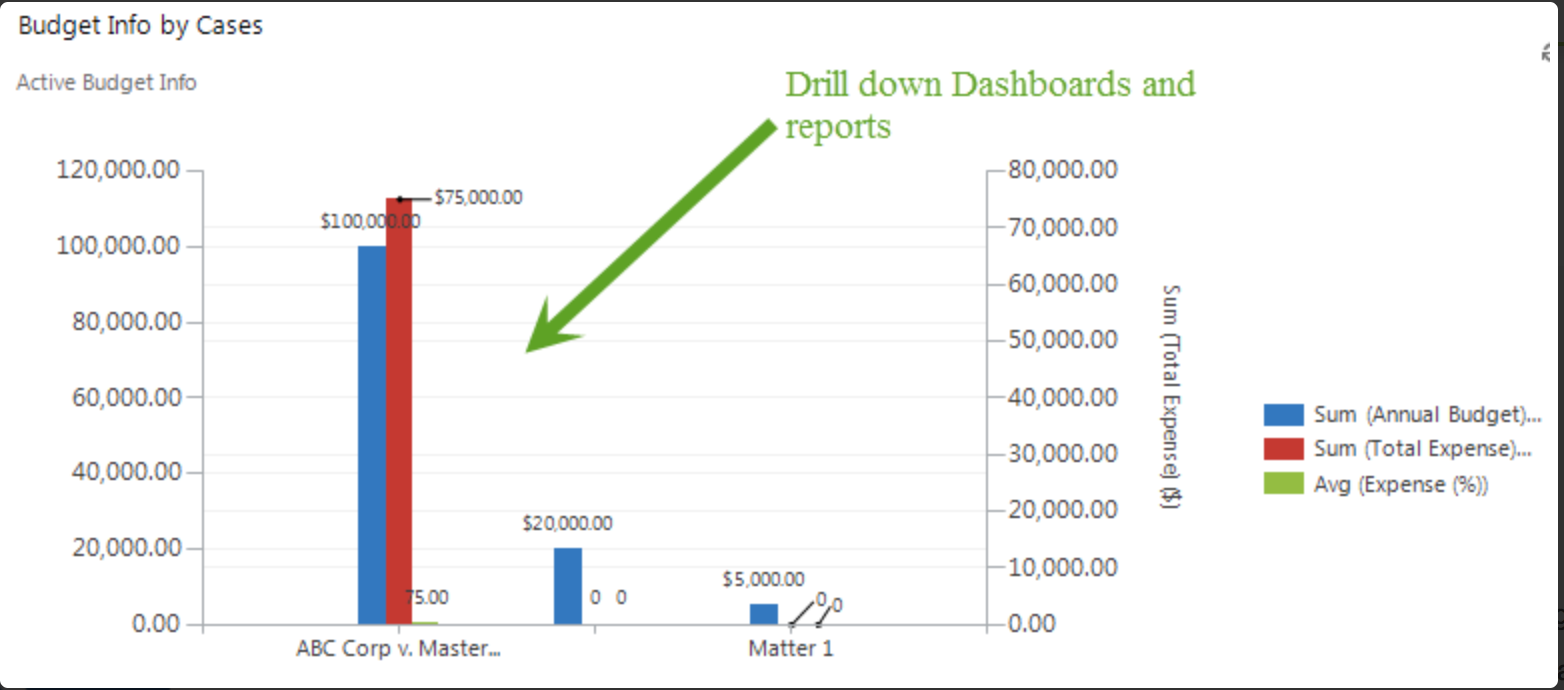 Drill down dashboards and reports give users insight into critical data like legal budgets